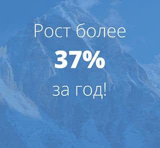 Новый рекорд посещаемости на сайте Domovita.by